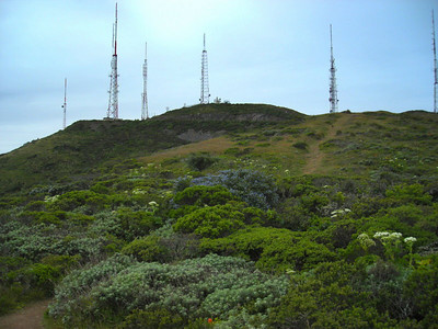San Bruno Mountain from just below the summit