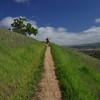 David on the Ohlone Trail