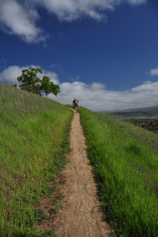 David on the Ohlone Trail