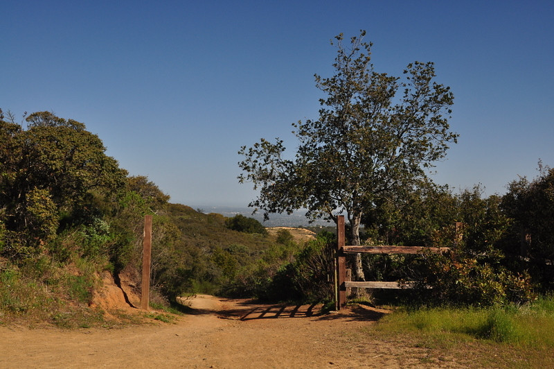 Gate at the Limekiln/Priest Rock trail junction
