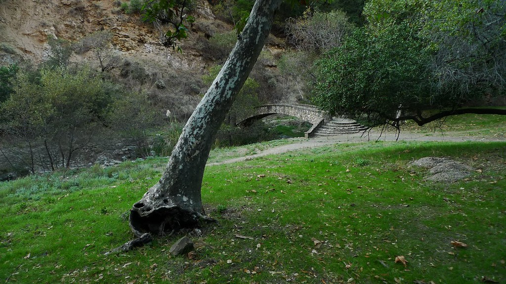 Down in Alum Rock County Park, the first municipal park in California (formed in 1872).