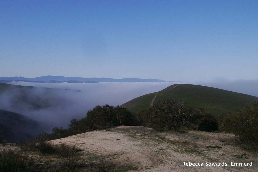 If there was no fog you would see the pacific ocean in the distance. Ollason Peak is the green hillside in front of us.