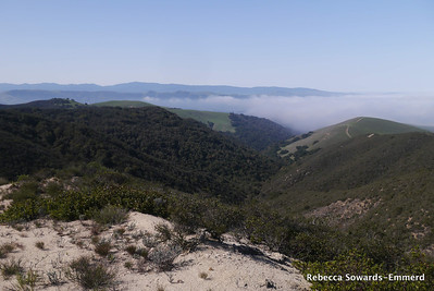 Another view to the west. Fog is slowly blowing out. We can head the sounds of Laguna Seca in the distance. Not the most peaceful of hikes, but there aren't a lot of people out here.