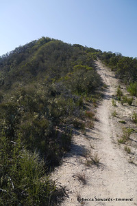 The rolling ridge goes steeply up and down over a bunch of bumps. It adds on a lot of unnecessary climbing.