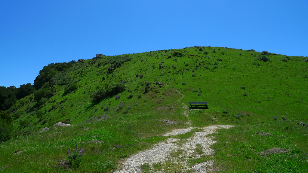 Back on the old road at the bench (use trail to the summit is visible going up behind the bench.