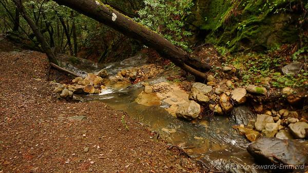 Above Upper Falls.