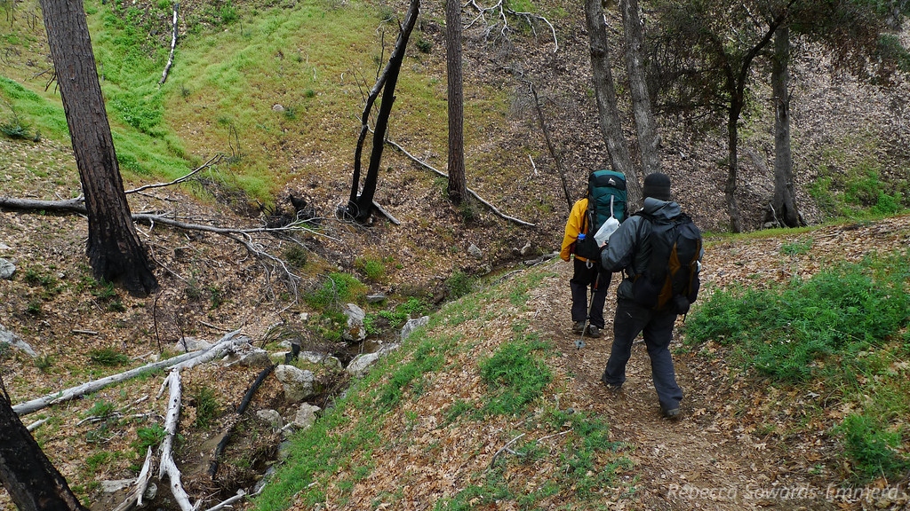 Heading down church creeks into Pine Valley. Now we're below the cloud layer so it's not so bad.