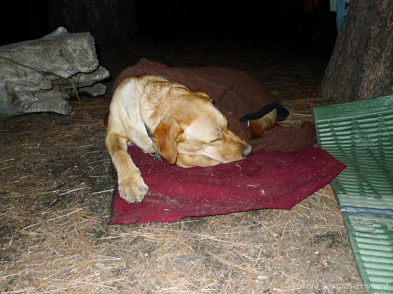 B has had a long day.