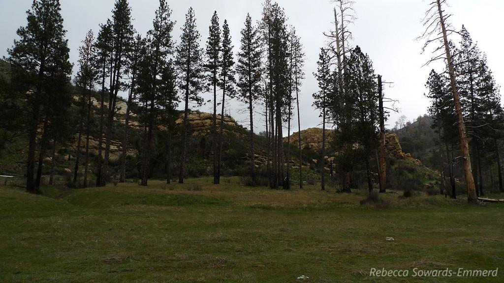 Rocks by camp