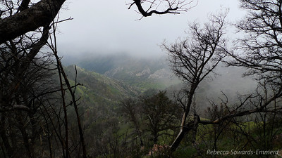 Occasionally the fog would clear enough for us to get peeks into amazing  terrain.
