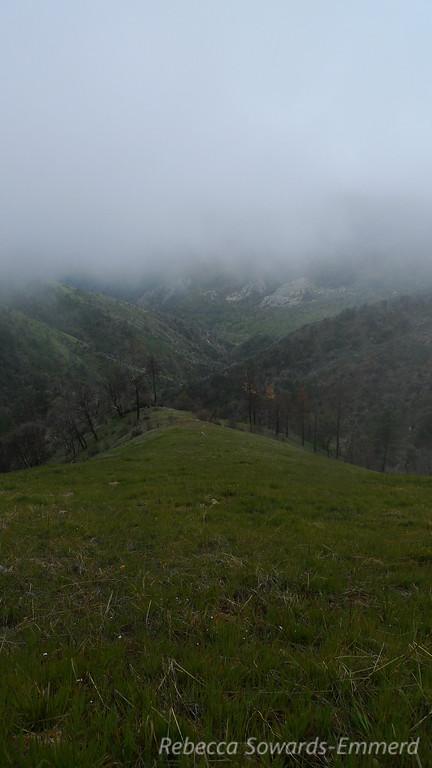 Peeking down a ridge into the rocky valley far below.