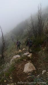 Into the fog along Pine Ridge