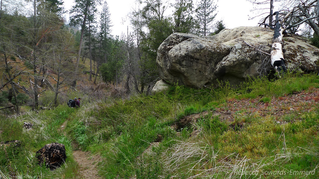Tons of interesting rock formations in Pine Valley.