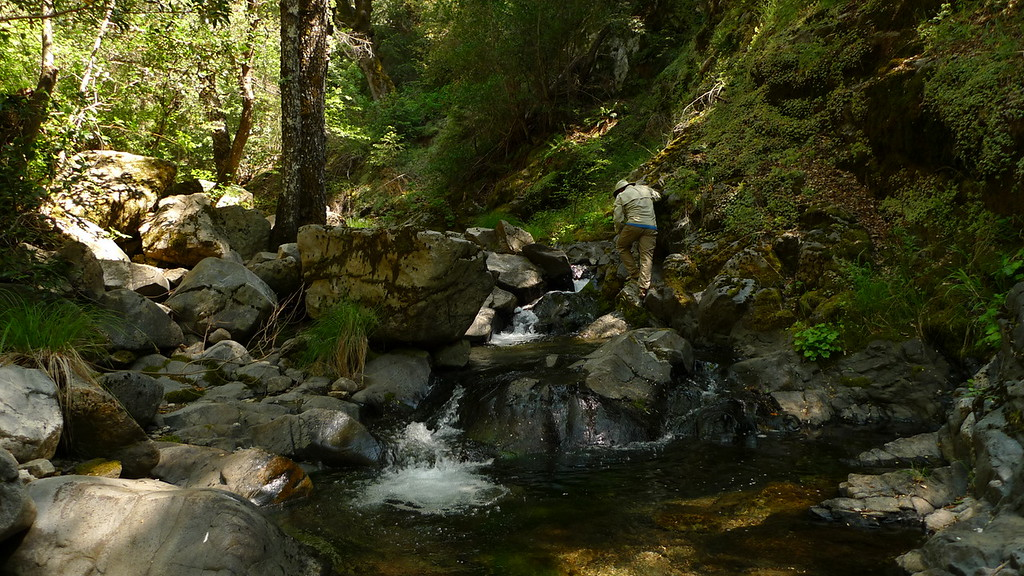 Scrambling back up the creek on the way back. Slid once, now I have a nice giant bruise on my shin. :/