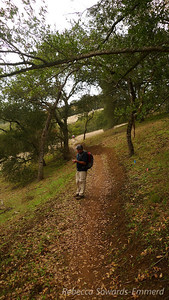 Heading up the new Jim Donnelly Trail in Henry Coe