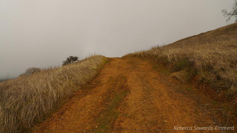 Heading along Wilson Ridge