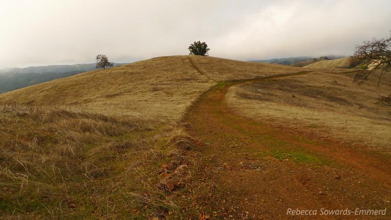 On our way along Wilson Ridge towards Wilson Peak