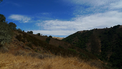 We started at Hunting Hollow and took the middle steer ridge trail straight up to Wilson Peak