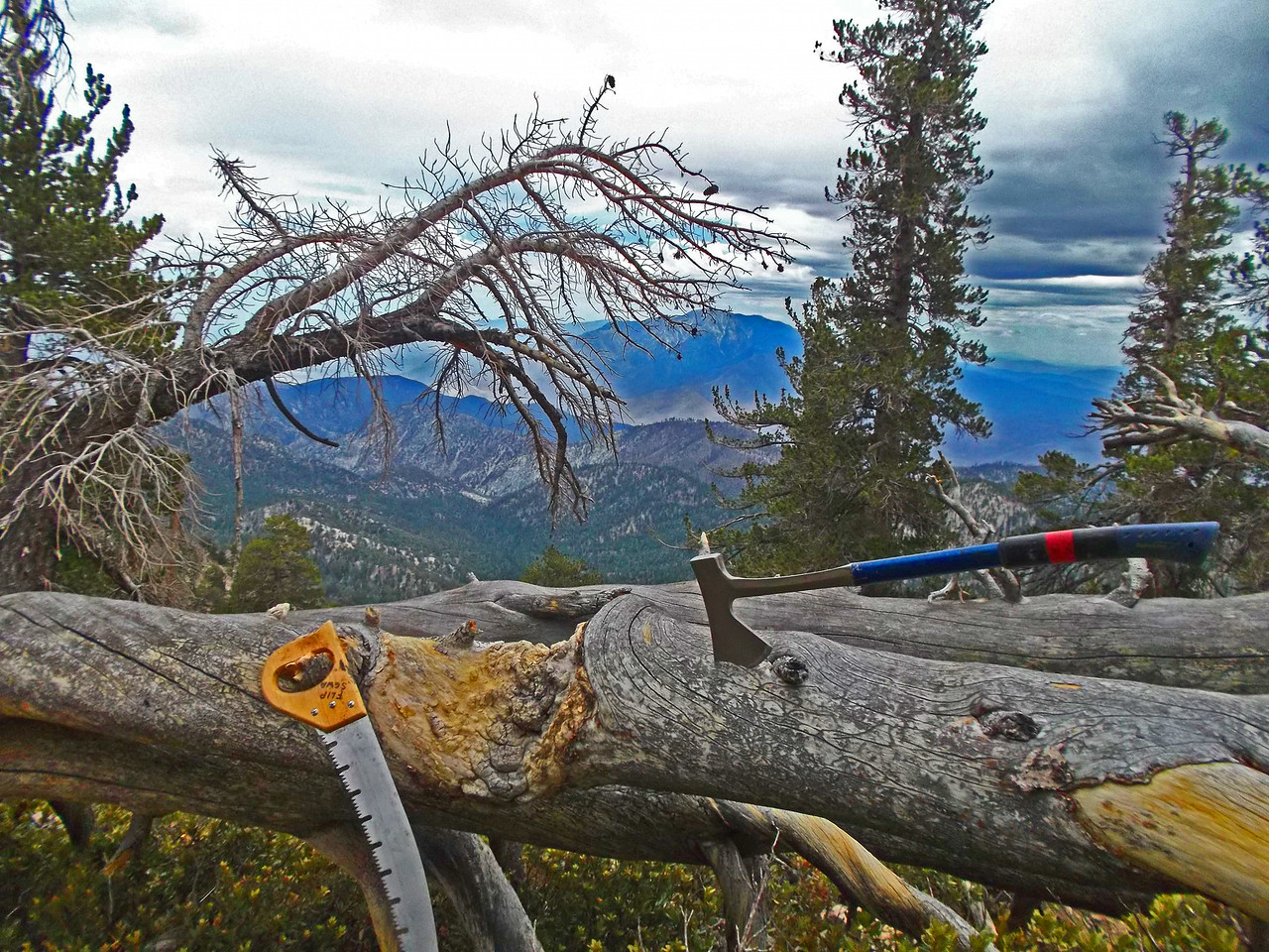 """View out the """"office"""" window above High Creek Camp."""