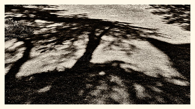 20150428_MONTSOURIS_0017b-BW-