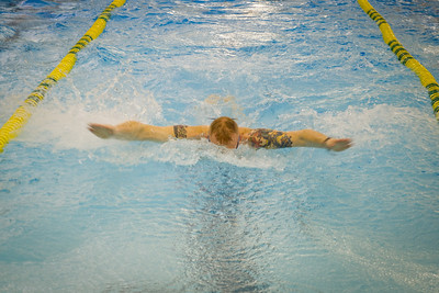 SACEURs Trophy swimming 2014