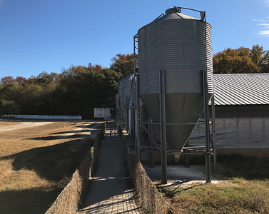WALTERS PIG FARM 2 TEMPORARILY EMPTY BUILDINGS