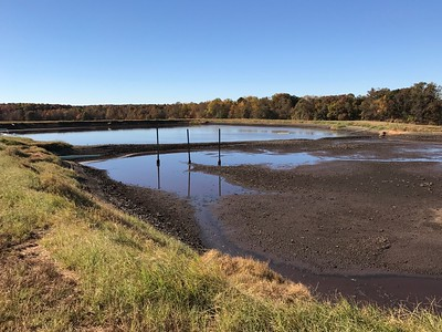 WALTERS PIG FARM WASTE POND