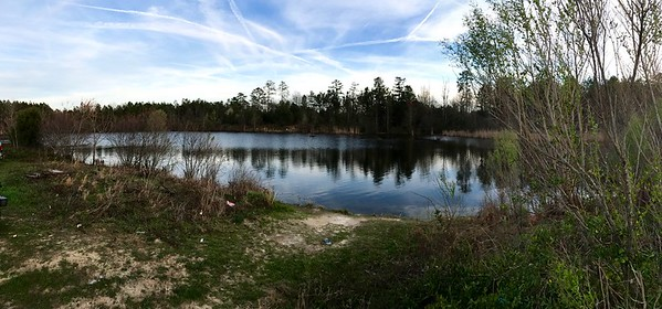 Pond in Milner, Ga, pasture