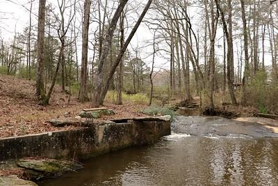 Weldon Family Pond-Milner, Ga.