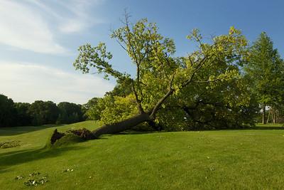 SHCC Storm Damage