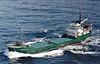 1972, 1977 to 1985 - ARKLOW VALE - Cargo - 443GRT/620DWT - 50.8 x 8.2 - 1963 Scheeps Bodewes, Hoogezand, No.110 as ROSCREA (1963-64) - TORQUAY (1974-72), GLENBOORK (1972-77) - 1985 GOLDEN VALE, 1986 REHEMA - 01/09/86 sank 80nm southeast of Socotra, Bilbao for Dar Es Salaam with gelignite.