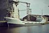 1978 to 1986 - BETTY C - Cargo - 499GRT/825DWT - 60.4 x 9.1 - 1961 Schiffs Hugo Peters, Wewelsfleth, No.514 as ANNE CATHARINA (1961-69) - KNUD (1969-75), NORDGARD (1975-78) - 1986 NORTH SOUND II, 1992 VIVIETTE (COL) - still trading - Kings Lynn, loading grain in Bentinck Dock, 08/83.