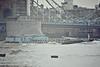 1964 to 1991 - CHARCREST - Tanker - 465GRT/514DWT - 49.8 x 10.2 - 1964 Charrington, Gardner & Locket, Dartford, No.197 - 1976 lengthened to 62.3m, 594GRT/908DWT - 1991 AQUEDUCT - 2011 laid up - Tower Bridge, heading upriver, 10/81.