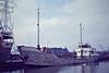 1974 to 1996 - HELENA JAYNE - Cargo - 382GRT473DWT - 48.8 x 7.8 - 1956 Scheeps van der Werff, Duivendijk, No.278 as NIEUWE WATERWEG (1956-68) - VIKING (1968-74) - 1982 sold to Irving J McQuilkin, name unchanged - 11/02/96 capsized and sank 28nm north of Boca, Trinidad - Colchester, 10/80.