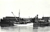 1923 to 1939 - BORDER FORTH - Cargo - 469GRT - 47.9 x 8.0 - 1919 Swan Hunter & Co., Wallsend, No.1115 as WAR TAMAR (1919-22) - CHALLACOMBE (1922-23) - 1939 EASTCOASTER, 1946 HUNG SING, 1948 CHAMPADAH, 1961 SINAR DJAJA - 07/89 deleted from Lloyd's Register, existence in doubt.