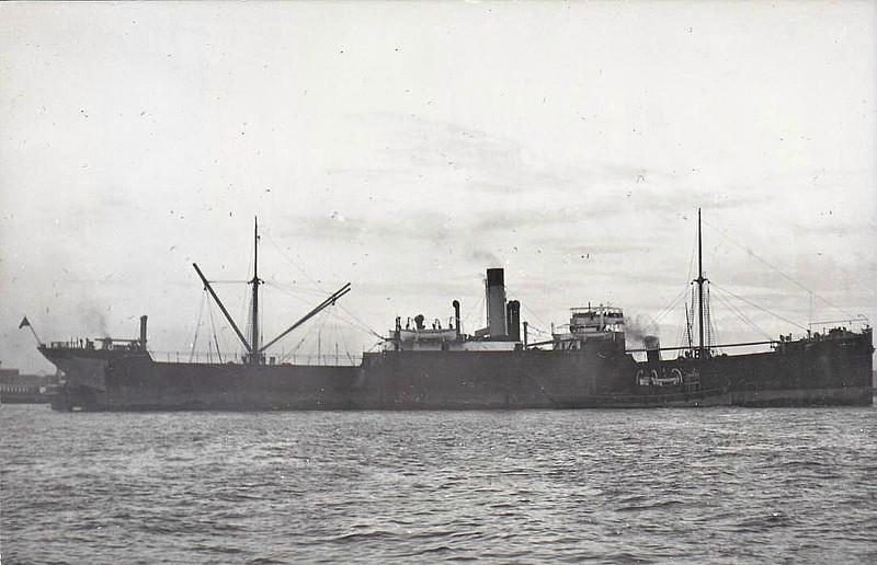 1907 to 1936 - NAVARINO - Cargo - 5103GRT/8260DWT - 121.9 x 15.9 - 1907 Hamilton & Co., Glen Yard, No.191 - 1936 ISCHIA - 28/02/43 torpedoed and sunk 1nm off Portofino by HMS TORBAY.