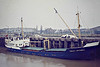 1979 to 1982 - VIOLET MITCHELL - Cargo - 385GRT/473DWT - 48.0 x 8.0 - 1957 Scheeps Vuijk, Capelle, No.738 as ASPERA (1957-79) - 1982 SOJOURNER, 1984 VIOLET MITCHELL - 20/04/86 capsized and sank at Whale Cay, Bahamas, Great Abaco Island for West Palm Beach - seen here at Wisbech, unloading potatoes for MacCain's at Whittlesey, 03/82.