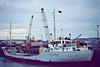 1977 to 1990 - WOOLACOMBE - Cargo - 499GRT/820DWT - 57.8 x 9.1 - 1967 Scheeps Voorwarts, Martenshoek, No.194 as CLARISSA (1967-77) - 1990 JOSIANE, 1991 WOOLACOMBE, 1994 LADY FAZEELA - still trading - Wisbech, unloading fertiliser, 10/80.