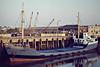 1981 to 1991 - JONSUE - Cargo - 351GBR/433DWT - 47.2 x 7.1 - 1950 Scheeps Terneuzensche, No.46 as CAMPEN (1950-54) - 1954 FAVORIET, 1955 MERWESTAD, 1969 EAGLE 2, 1971 FRETHERNE - Wisbech, to unload soya meal, 10/82 - 1991 sank at Fosdyke, broken up in situ.