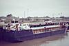1982 to 2005 - HOO VENTURE - Cargo - 498GRT/1236DWT - 50.0 x 9.5 - 1982 Yorkshire Drydock Co., Hull, No.277 - 2005 GOLDEN VENTURE, 2008 SAYRANDEEPA, 2008 GOLDEN GULF, 2009 RUBY (SLE) - still trading - Wisbech, securing for sea after unloading bagged fertiliser, 09/83.