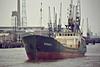 1982 to DATE - RONEZ - Cement Carrier - 837GRT/1117DWT - 64.7 x 10.1 - 1982 Scheeps Van Goor, Monnickendam, No.675 - still trading - Northfleet, coming alongside at Bevans Wharf to load, 06/84.