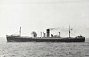 1959 to 1960 - UMGENI - Cargo - 9209GRT/10145DWT - 148.6 x 19.2 - 1942 Greenock Dockyard Co., Cartsdyke East, No.450 as EMPIRE MIGHT (1942-46) - CLAN MACRAE (1946-59) - 1960 GEMSBOK, 1961 SOUTH AFRICAN FINANCIER, 1962 SANTA MARIA DE ORDAZ - 02/62 broken up at Valencia.