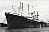 1950 to 1966 - STREATHAM HILL - Cargo - 7130GRT/10000DWT - 134.6 x 17.4 - 1943 Davie Shipbuilders, Lauzon, No.541 as FORT MINGAN (1943-48) - HALIGONIAN KING (1948-50) - 10/66 broken up at Santander.