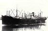 1929 to 1940 - SULAIRIA - Cargo - 5802GRT/9390DWT - 129.5 x 17.1 - 1929 Lithgows Shipbuilders, Port Glasgow, No.825 - 25/09/40 torpedoed and sunk in Convoy OB217 400nm west of Ireland by U43.