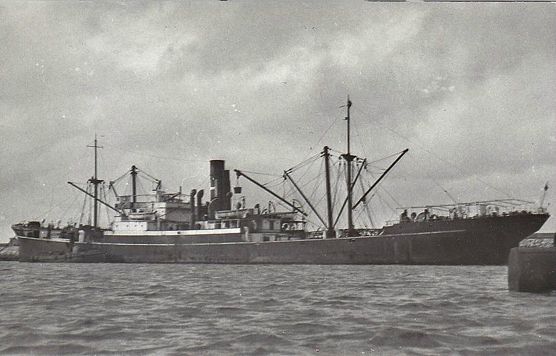 1919 to 1938 - TRELYON - Cargo - 5294GRT/8210DWT - 121.9 x 16.0 - 1919 Readhead & Son, South Shields, No.11 - 1938 HANS RICKMERS - 17/04/40 Kriegsmarine troop transport, 08/40 Seelowe transport A11, 22/05/41 transport in Norway, 30/11/42 struck mine off Petsamo, beached and destroyed by Russian artillery.