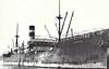 1905 to 1913 - GULISTAN - Cargo - 4445GRT - 115.9 x 15.1 - 1905 Scotts Shipbuilders, Greenock, No.395 - 1913 BORDERDALE, 1915 TRITONIA - 27/02/17 torpedoed and sunk 20nm off Inishtearaght Island by U49, Saint John, NB, for Glasgow, horses and general casrgo.