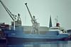 1972 to 1982 - WHITEGATE (London) - IMO7228364 - Cargo - 1600GRT/2920DWT - 1972 Gebr van Diepen, Waterhuizen, No.1001 - 87.5 x 12.0 - 1982 HELENA, 1986 TALEA, 1994 AL NAJWA, 2005 CARLA, 2008 AL MAJED (PAN) - still trading - seen here as HELENA (DEU) at Kings Lynn, unloading soya meal in Bentinck Dock, 08/83.