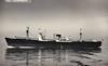 1952 to 1964 - FLOWERGATE - Cargo - 4894GRT/9450DWT - 1952 Burntisland Shipbuilding Co., No.344 - 134.5 x 17.3 - 1964 AMENITY - 05/77 broken up at Troon.