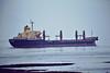 1982 to 2012 - LILIAN DIMITROVA - Bulk Carrier - 23104GRT/38400DWT - 201.6 x 27.9 - 1982 Georgi Dimitrov Shipyard, Varna, No.068 - 03/12 broken up at Gadani Beach - Terneuzen, inward bound for Antwerp, 02/07/08.
