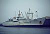 1976 to 2003 - NIKOLA VAPTZAROV - Cargo/Training Ship - 5083GRT/5525DWT - 122.2 x 17.9 - 1976 Stocznia im A Warskiego, Szczecin, No.B80-6/12 - 10/03 broken up at Aliaga - Great Yarmouth, 02/81.